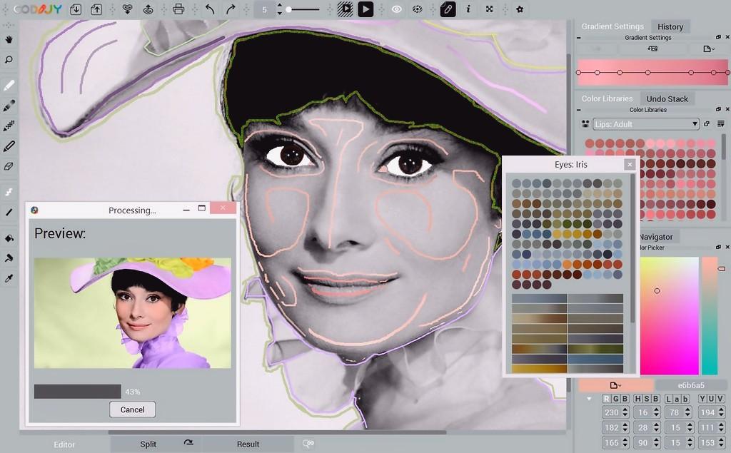 Audrey_Hepburn-interface1